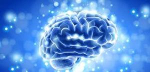 otak sehat
